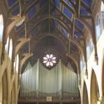 interior_organ